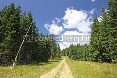 Nature: Ski track in summer. Bukovel ski resort Carpathian mountains U #04229