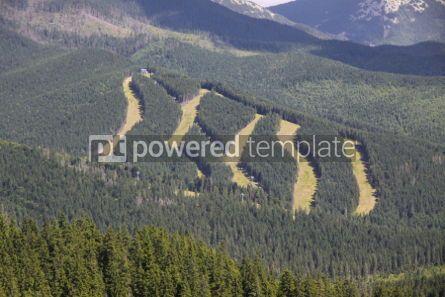 Nature: Tracks of famous Bukovel ski resort in summer Carpathian mounta #04231