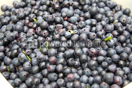 Food & Drink: Fresh washed blueberry background #04261
