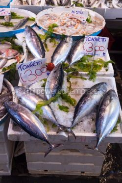 Food & Drink: Typical outdoor Italian fish market with fresh fish and seafood #04265