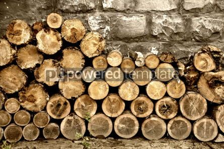 Nature: Pile of firewood #04443