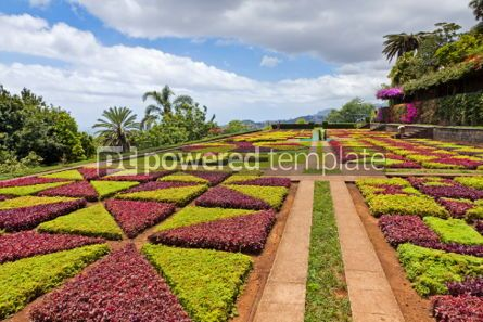 Nature: Tropical Botanical Garden in Funchal Madeira island Portugal #04506
