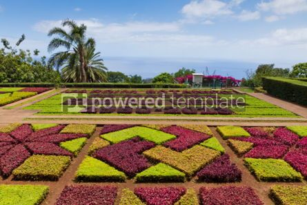 Nature: Tropical Botanical Garden in Funchal Madeira island Portugal #04507