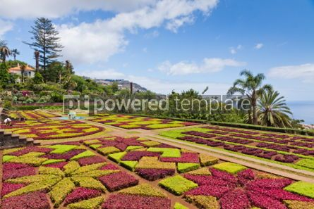 Nature: Tropical Botanical Garden in Funchal Madeira island Portugal #04508