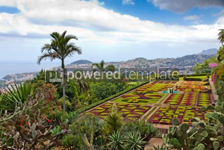 Nature: Tropical Botanical Garden in Funchal Madeira island Portugal #04511