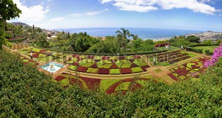 Nature: Panoramic view of Tropical Botanical Garden in Funchal city Mad #04516