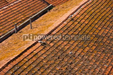 Architecture : Aerial view of orange tile rooftops in Porto Portugal #04563