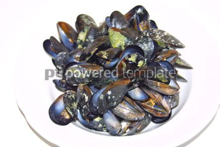 Food & Drink: Close-up opened boiled small mussels on a plate #04715
