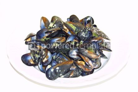 Food & Drink: Close-up opened boiled small mussels on a plate #04716