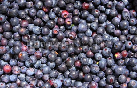 Food & Drink: Close-up fresh blueberry background #04721