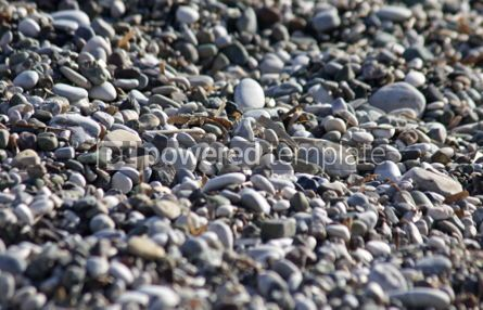 Nature: Close-up pebbles on the beach #04877