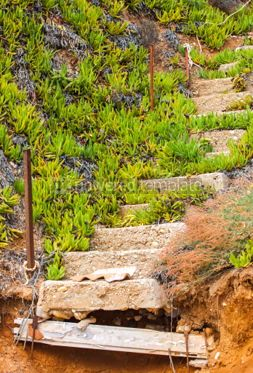Nature: Old ruined concrete stairs at the beach Halkidiki Greece #04887