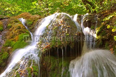 Nature: Waterfall in forest #04972