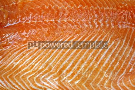 Food & Drink: Close-up fresh salmon fillet #05013