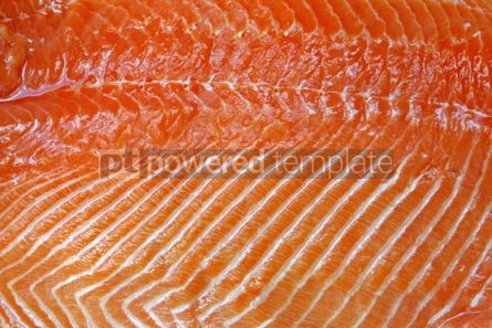 Food & Drink: Close-up fresh salmon fillet #05014