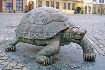 Architecture : Bronze turtle in Olomouc Czech Republic #05168