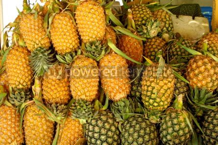 Food & Drink: Heaps of pineapples #05351