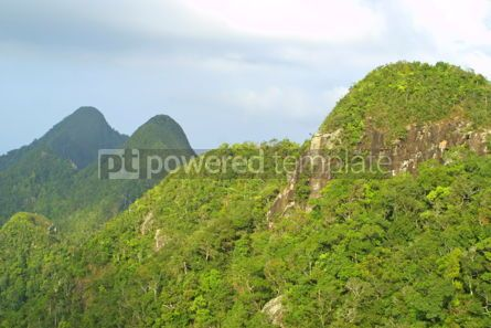 Nature: Rainforest hills on Langkawi island Malaysia #05365