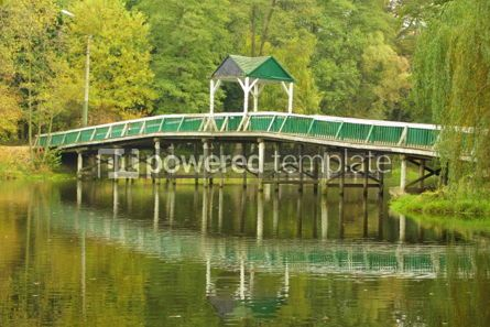 Architecture : Green park with lake and small wooden bridge #05403