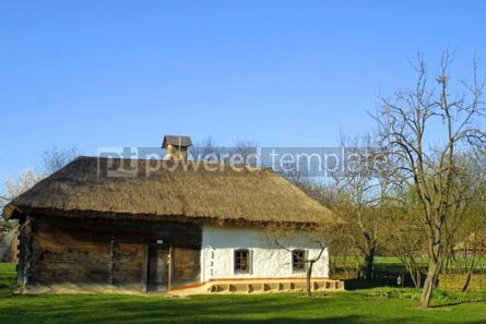 Architecture : Typical thatched roof house #05408