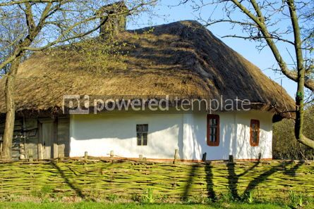 Architecture : Typical thatched roof house #05410