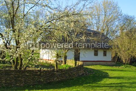Architecture : Typical thatched roof house #05411