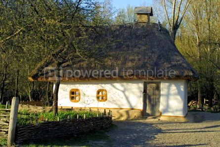 Architecture : Typical thatched roof house #05413