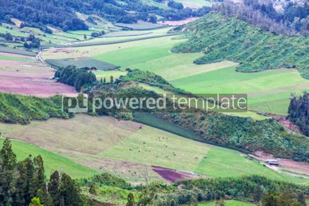 Nature: Green hilly terrain on Sao Miguel island of Azores Portugal #05506