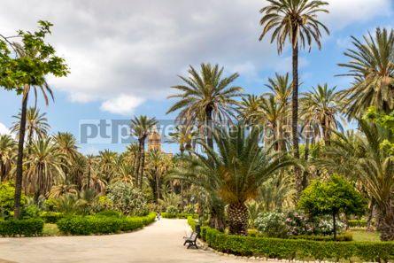 Nature: Villa Bonanno public garden in Palermo Sicily Italy #05526