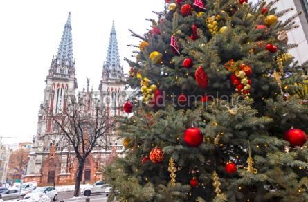 Architecture : St. Nicholas Roman Catholic Cathedral in Kyiv Ukraine #05554
