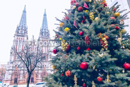 Architecture : St. Nicholas Roman Catholic Cathedral in Kyiv Ukraine #05555