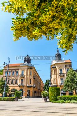 Architecture : Piac utca the major street of Debrecen city Hungary #05671