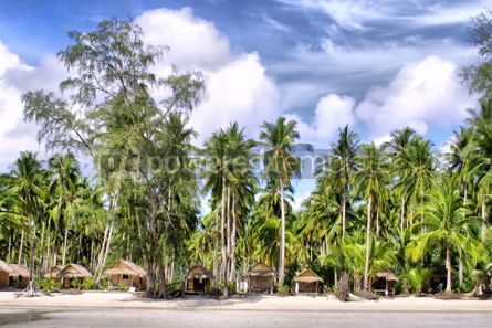 Nature: Huts and Coconut palms #05722