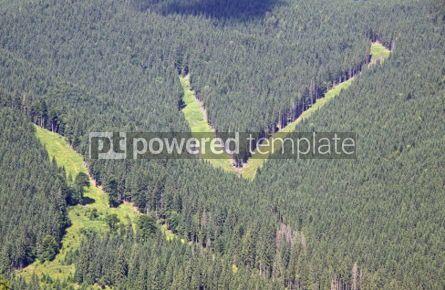 Nature: Tracks of Bukovel ski resort in summer Carpathian mountains #05736