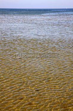 Nature: Baltic seacoast in Swinoujscie Poland #05743