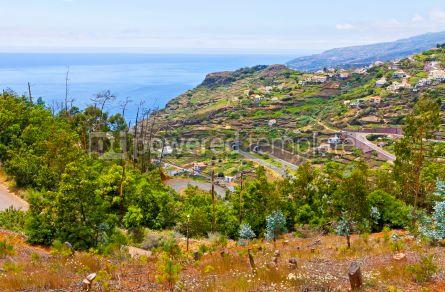 Nature: Atlantic Ocean coast on Madeira island Portugal #05767