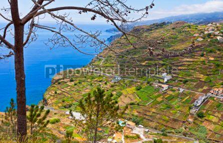 Nature: Atlantic Ocean coast on Madeira island Portugal #05768