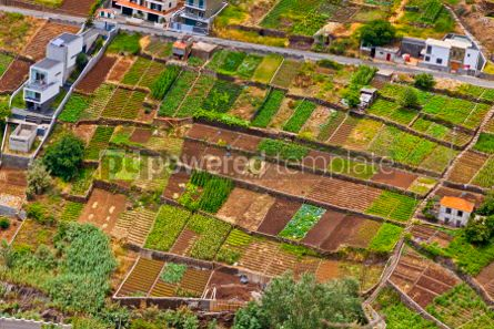 Nature: Picturesque rural landscape of Madeira island Portugal #05769
