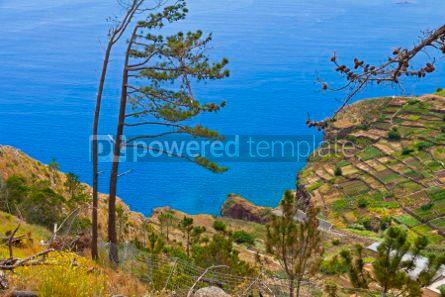 Nature: Atlantic Ocean coast on Madeira island Portugal #05771