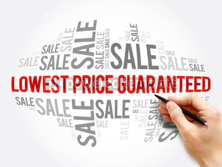 Business: Lowest Price Guaranteed words cloud #06118