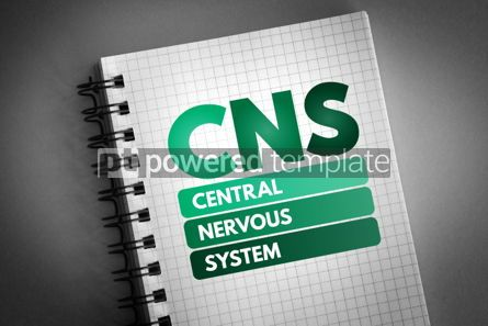 Health: CNS - Central Nervous System acronym #06669