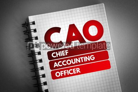 Business: CAO - Chief Accounting Officer acronym #06820