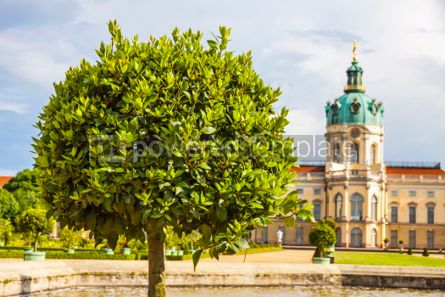 Architecture : Charlottenburg Palace in Berlin Germany #06883