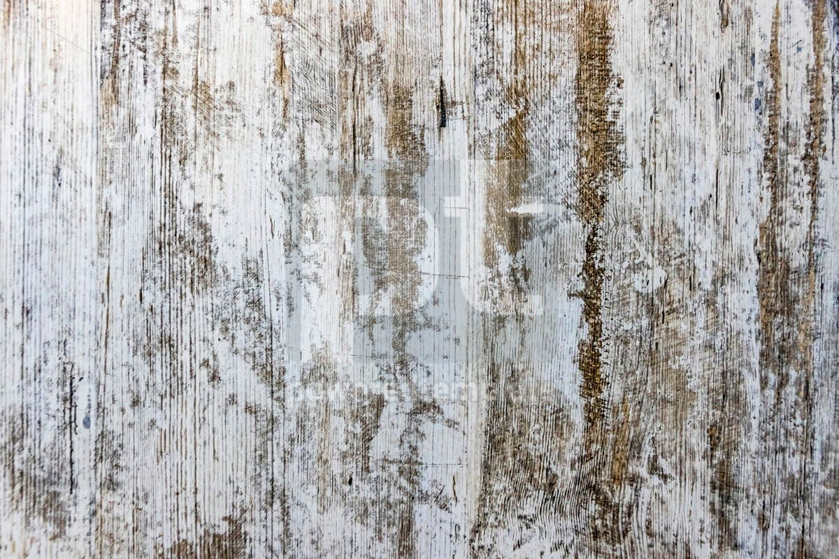 Gray old grunge textured wooden background, 06935, Abstract — PoweredTemplate.com