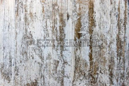 Abstract: Gray old grunge textured wooden background #06935
