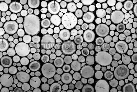 Abstract: Wall with wooden decorative panels. Natural background #06942