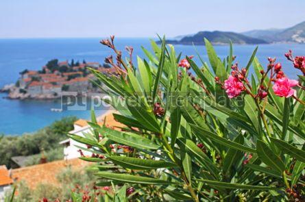 Nature: Sveti Stefan island resort in Adriatic sea Montenegro #07040