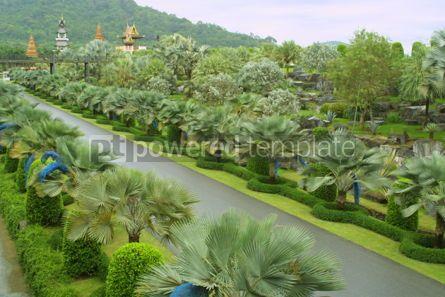 Nature: Nong Nooch Tropical Botanical Garden Pattaya Thailand #07071