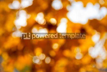 Nature: Abstract bokeh background #07100