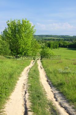 Nature: Walkway on a summer meadow #07108